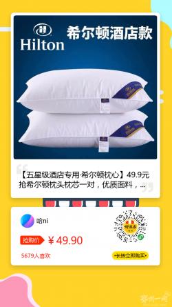 【五星级酒店专用·希尔顿枕心】49.9元抢希尔顿枕头枕芯一对,优质面料,5秒快速回...